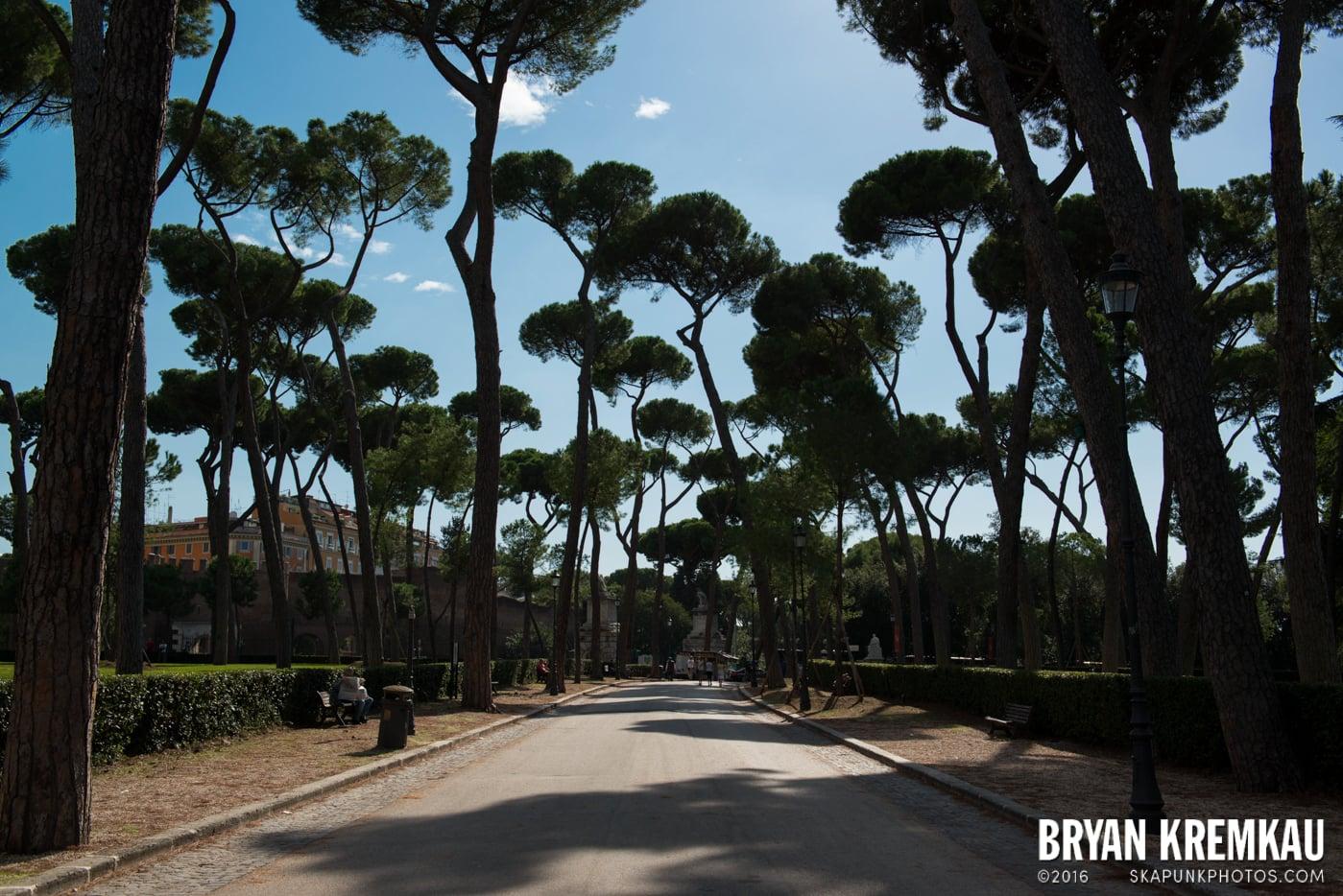 Italy Vacation - Day 12: Rome - 9.20.13 (7)
