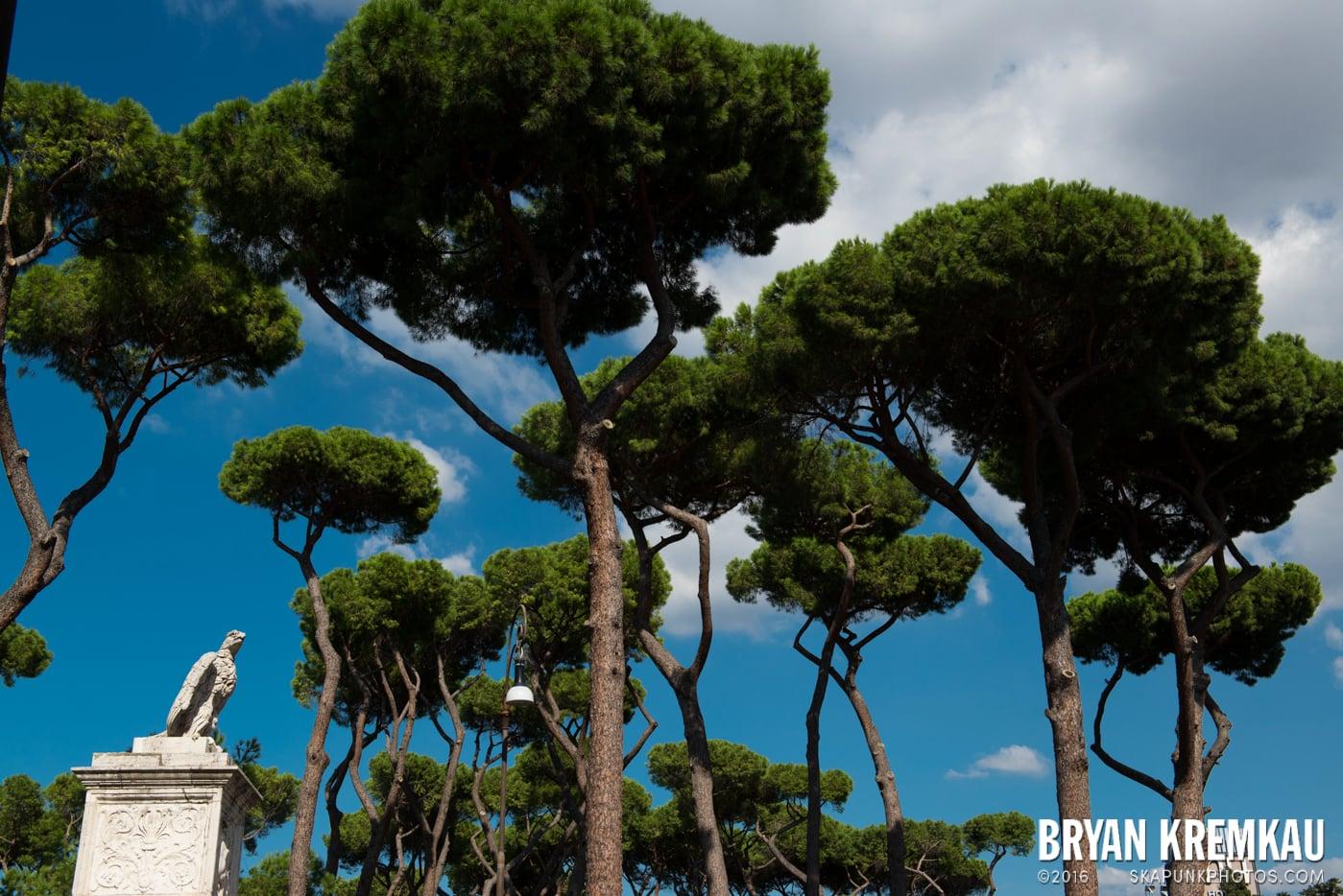 Italy Vacation - Day 12: Rome - 9.20.13 (6)