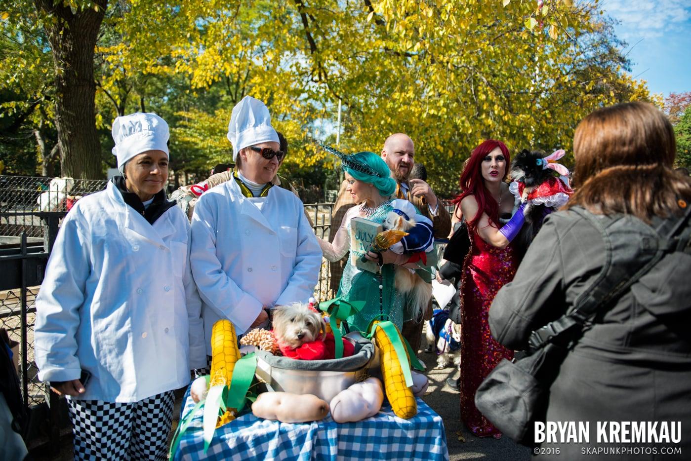Tompkins Square Halloween Dog Parade 2013 @ Tompkins Square Park, NYC - 10.26.13 (68)