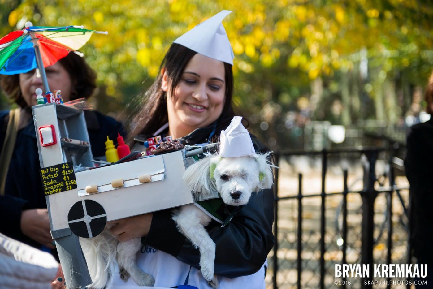 Tompkins Square Halloween Dog Parade 2013 @ Tompkins Square Park, NYC - 10.26.13 (65)