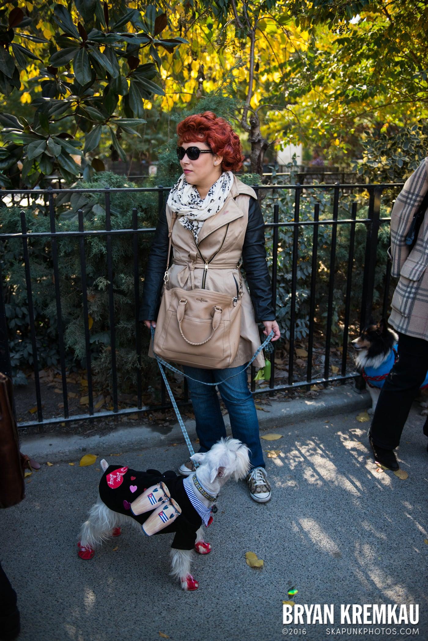 Tompkins Square Halloween Dog Parade 2013 @ Tompkins Square Park, NYC - 10.26.13 (55)