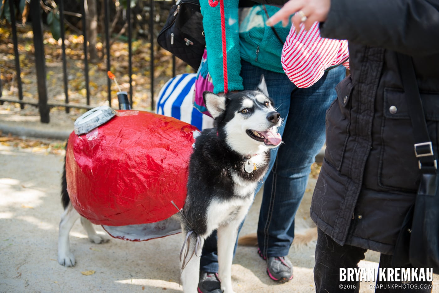 Tompkins Square Halloween Dog Parade 2013 @ Tompkins Square Park, NYC - 10.26.13 (43)