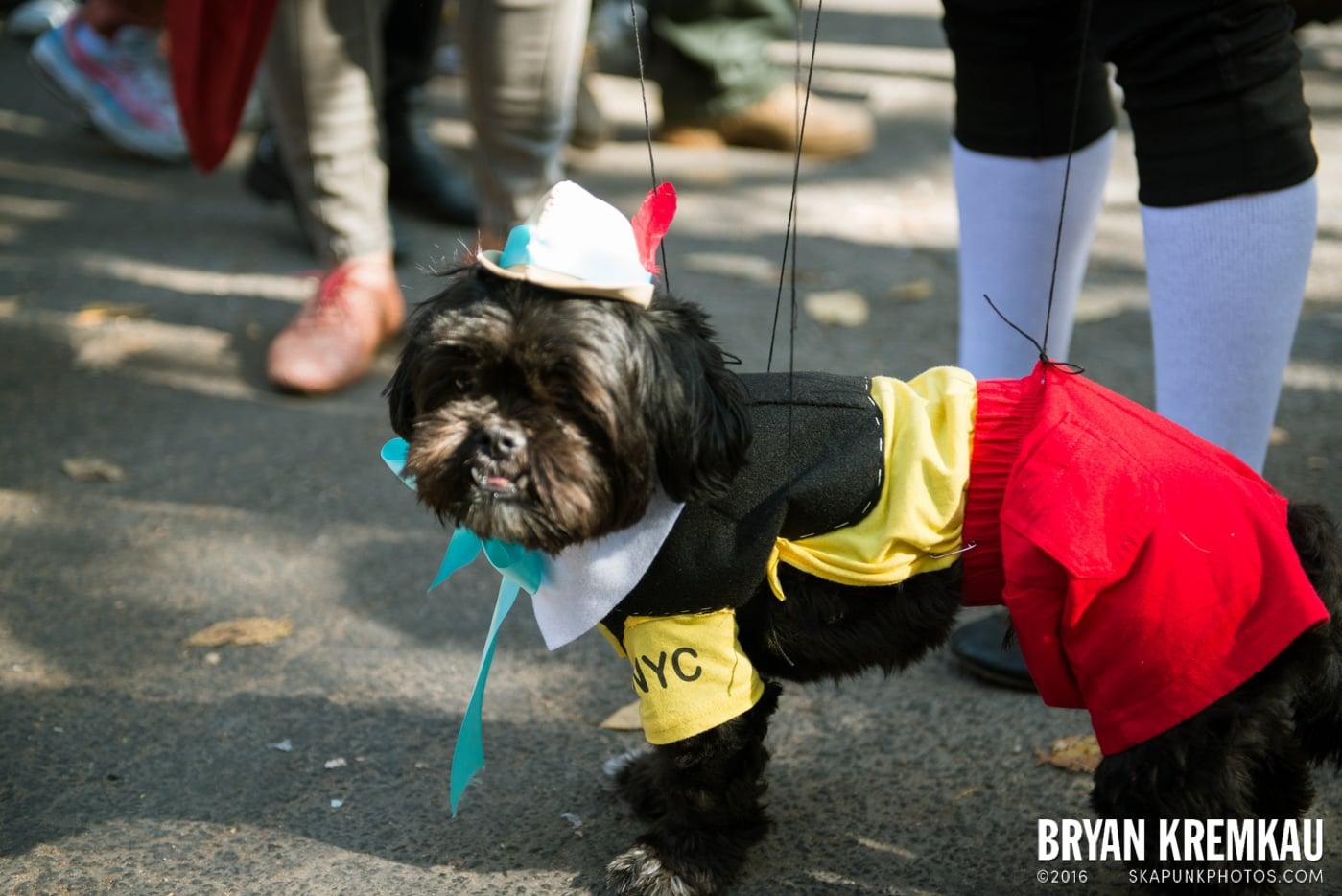 Tompkins Square Halloween Dog Parade 2013 @ Tompkins Square Park, NYC - 10.26.13 (28)