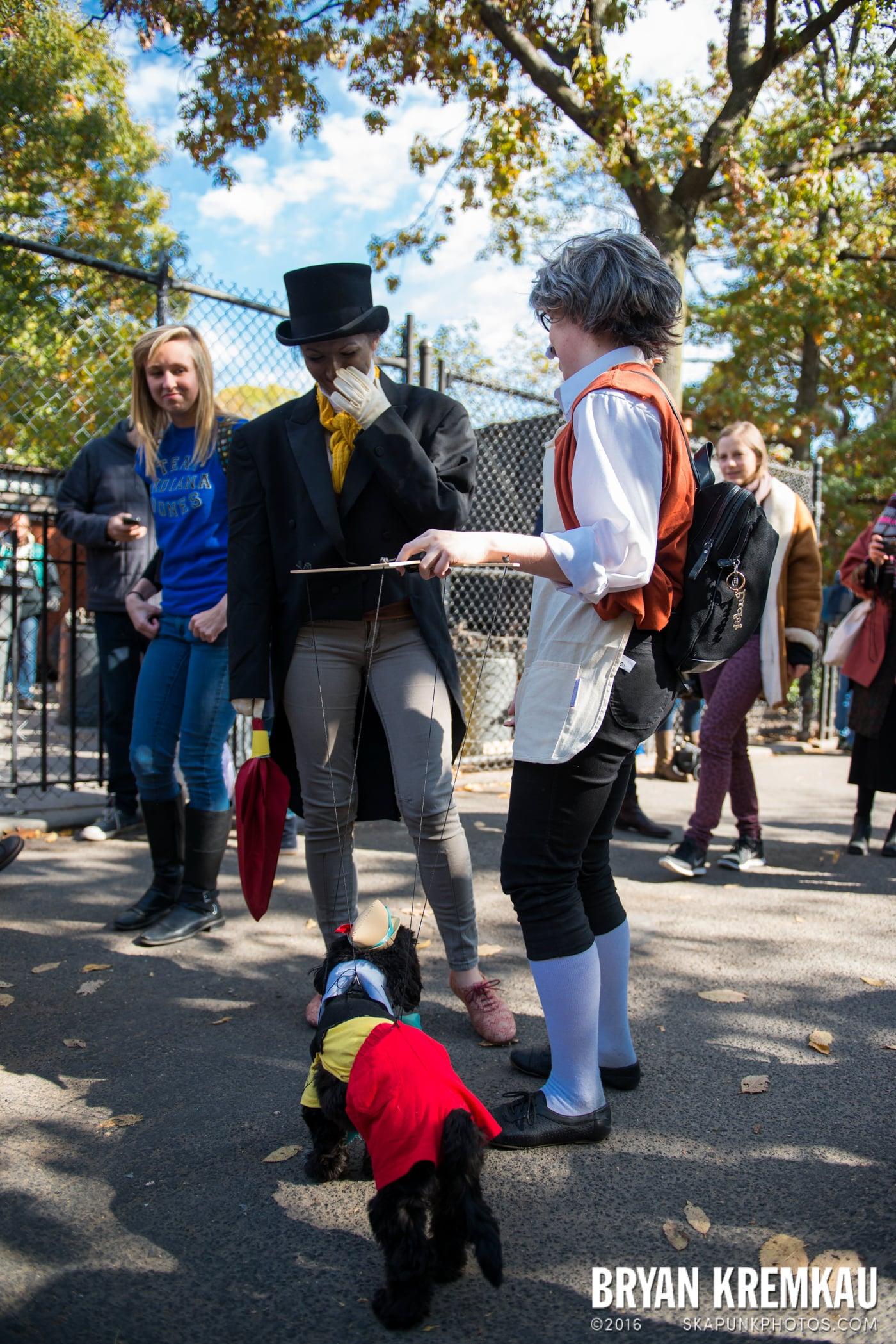 Tompkins Square Halloween Dog Parade 2013 @ Tompkins Square Park, NYC - 10.26.13 (27)