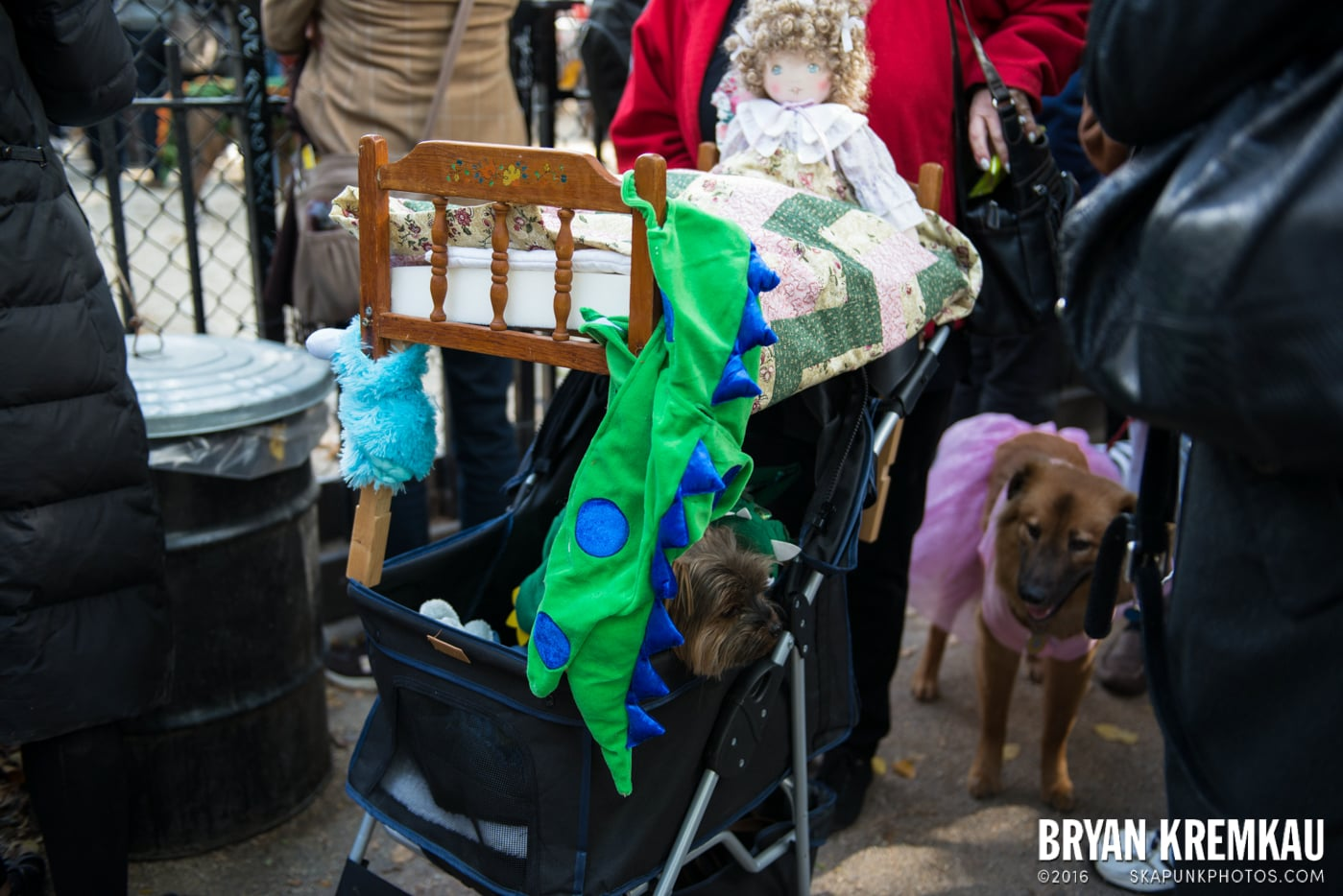 Tompkins Square Halloween Dog Parade 2013 @ Tompkins Square Park, NYC - 10.26.13 (6)