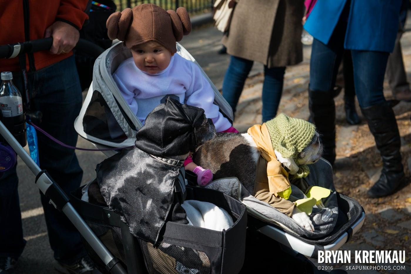 Tompkins Square Halloween Dog Parade 2013 @ Tompkins Square Park, NYC - 10.26.13 (4)