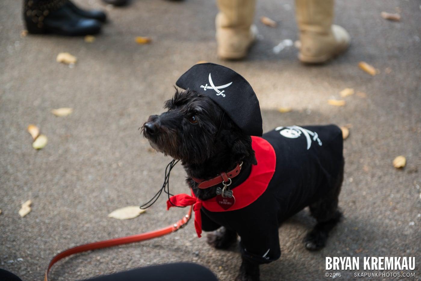 Tompkins Square Halloween Dog Parade 2013 @ Tompkins Square Park, NYC - 10.26.13 (2)