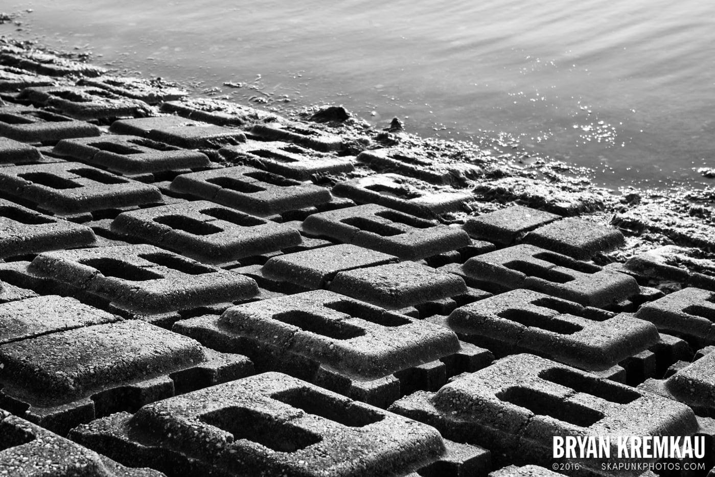 Beach Haven, Long Beach Island, NJ - 6.16.14 - 6.18.14 (88)