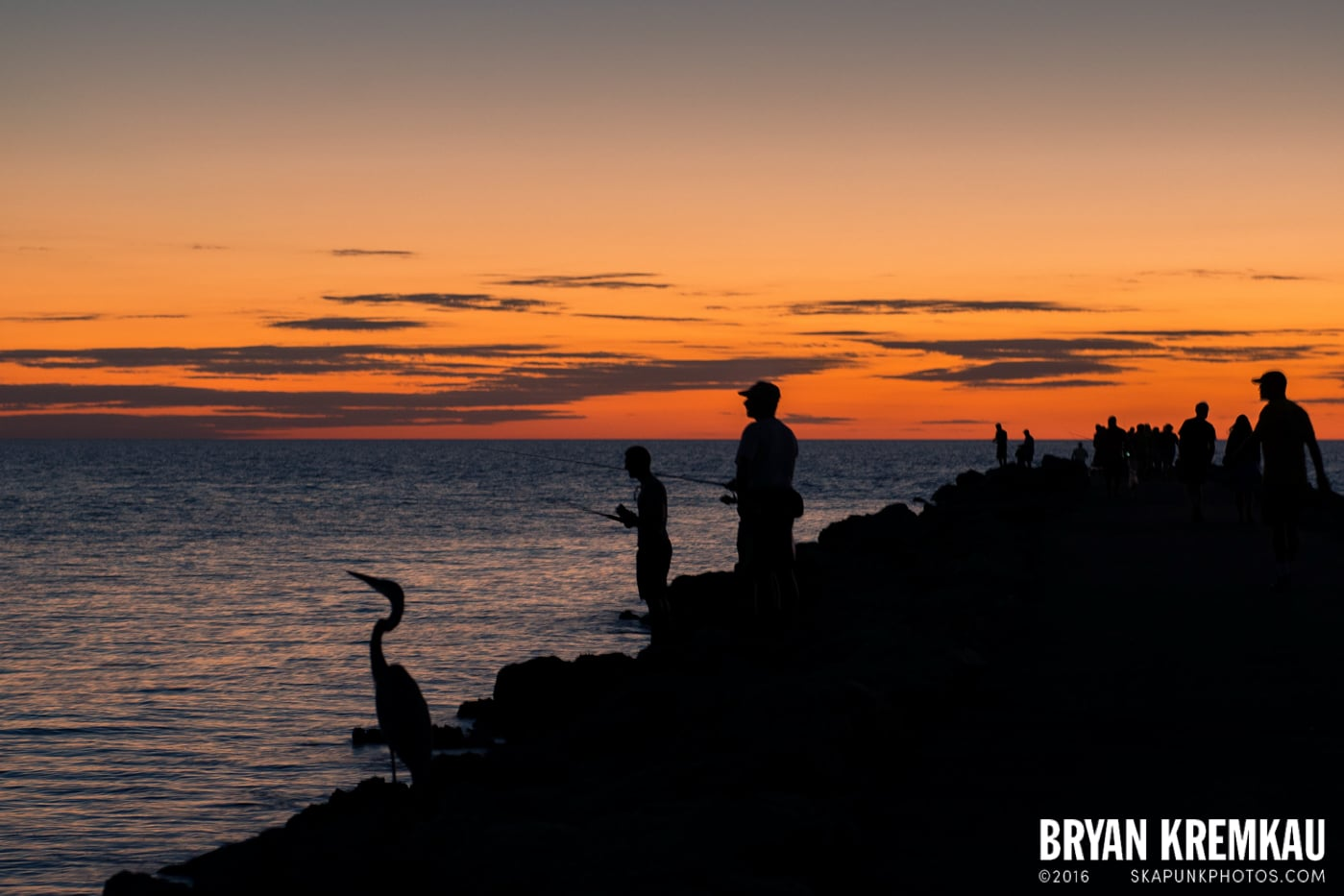 Sunsets, Astrophotography & Birds @ Venice, Florida - 10.25.14 - 11.5.14 (123)