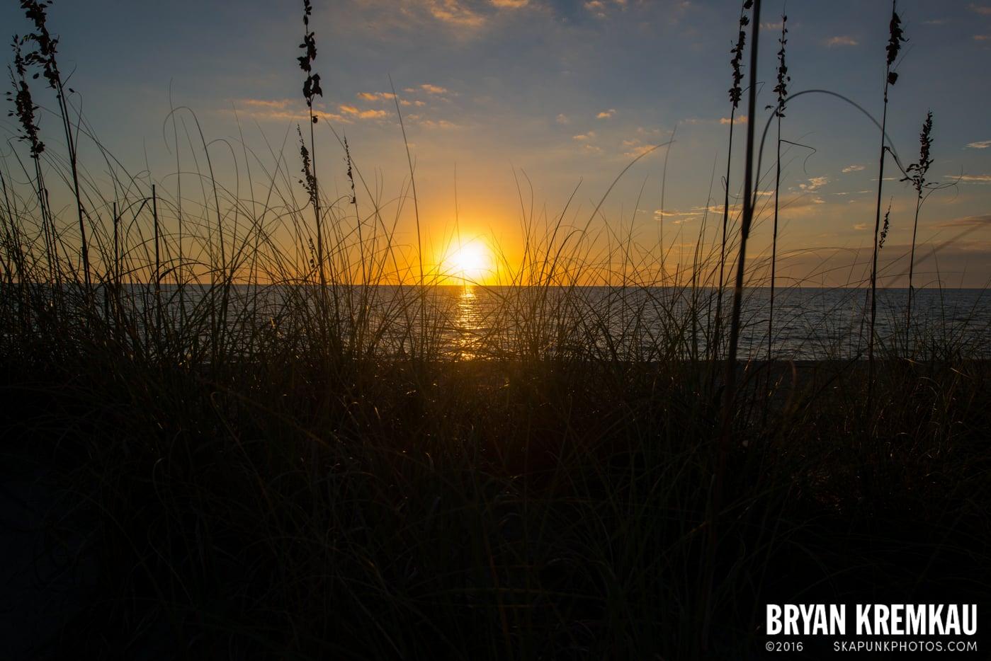Sunsets, Astrophotography & Birds @ Venice, Florida - 10.25.14 - 11.5.14 (119)