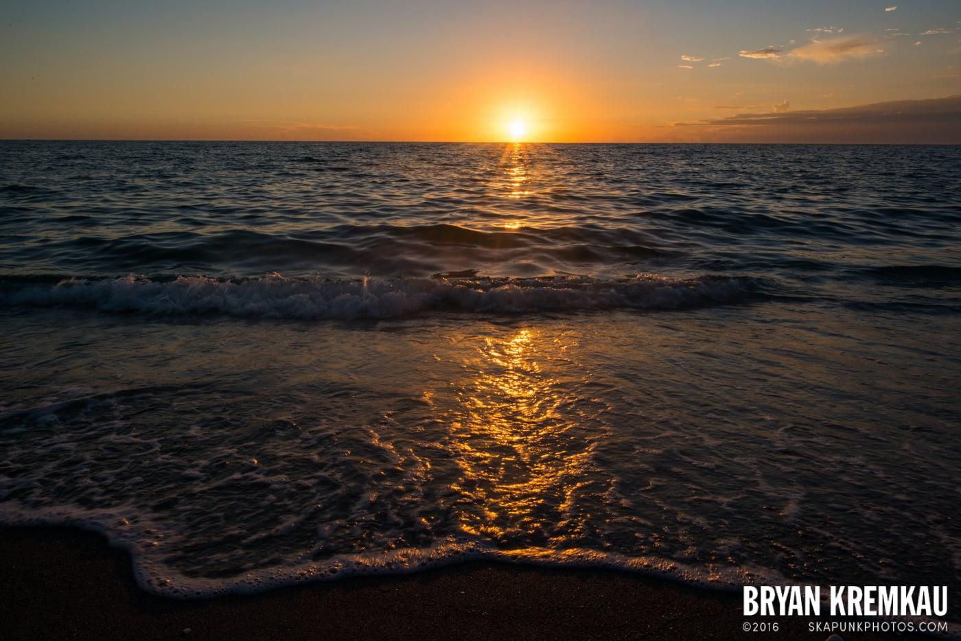 Sunsets, Astrophotography & Birds @ Venice, Florida - 10.25.14 - 11.5.14 (118)