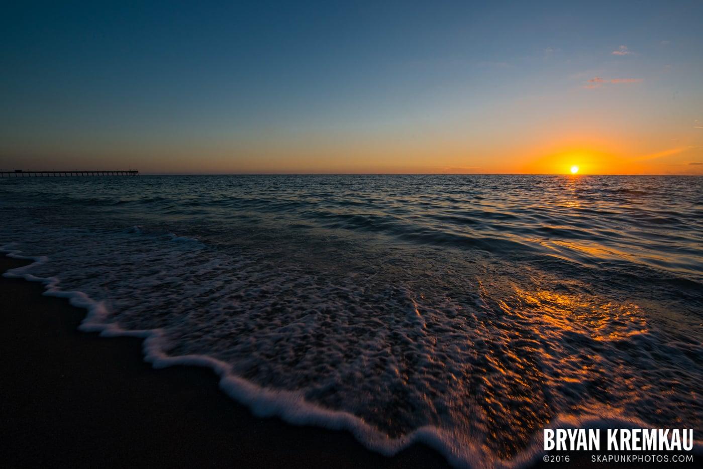 Sunsets, Astrophotography & Birds @ Venice, Florida - 10.25.14 - 11.5.14 (117)