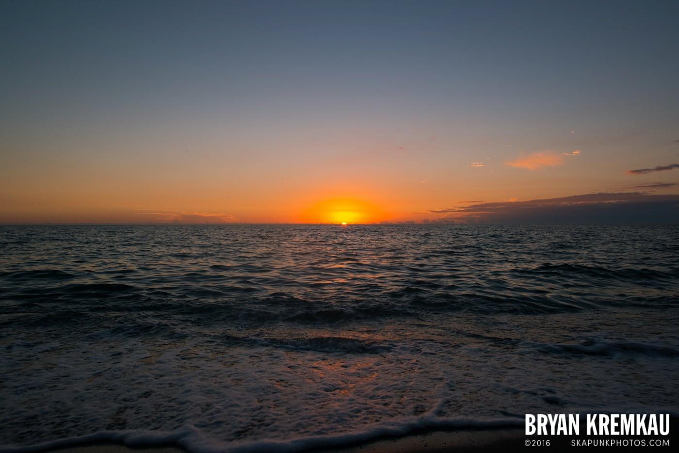 Sunsets, Astrophotography & Birds @ Venice, Florida - 10.25.14 - 11.5.14 (116)