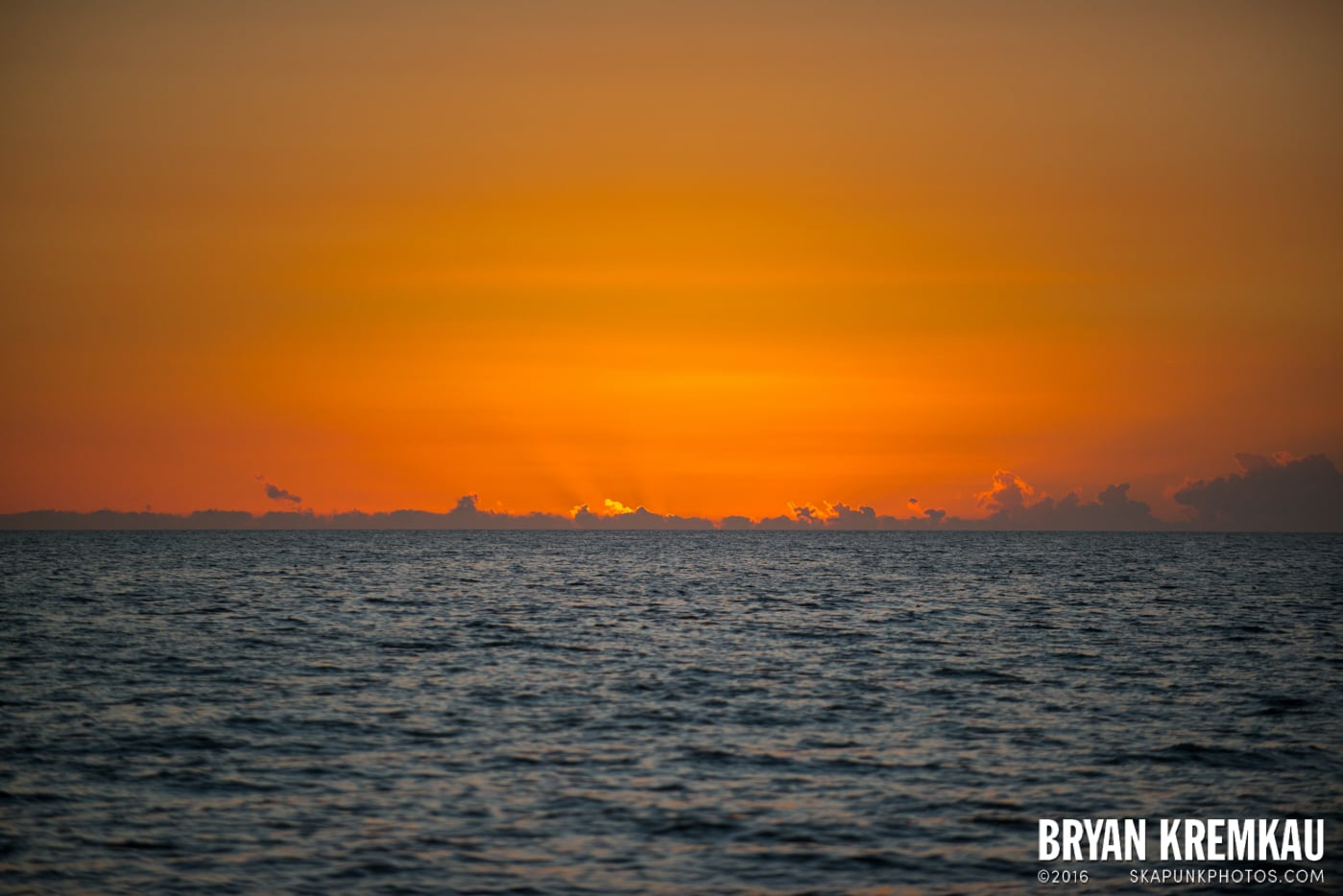 Sunsets, Astrophotography & Birds @ Venice, Florida - 10.25.14 - 11.5.14 (115)