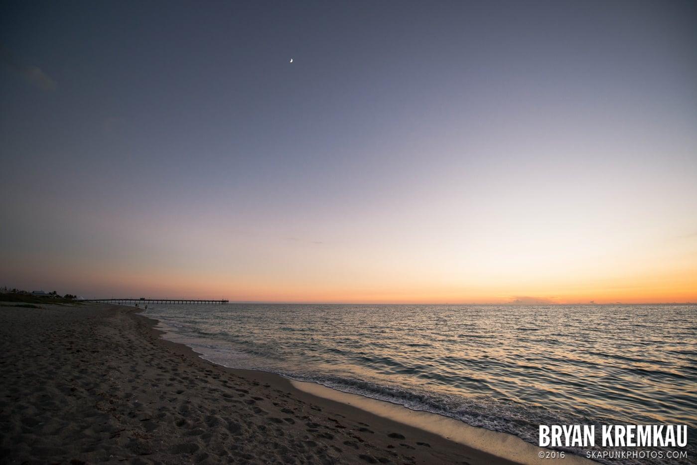Sunsets, Astrophotography & Birds @ Venice, Florida - 10.25.14 - 11.5.14 (110)