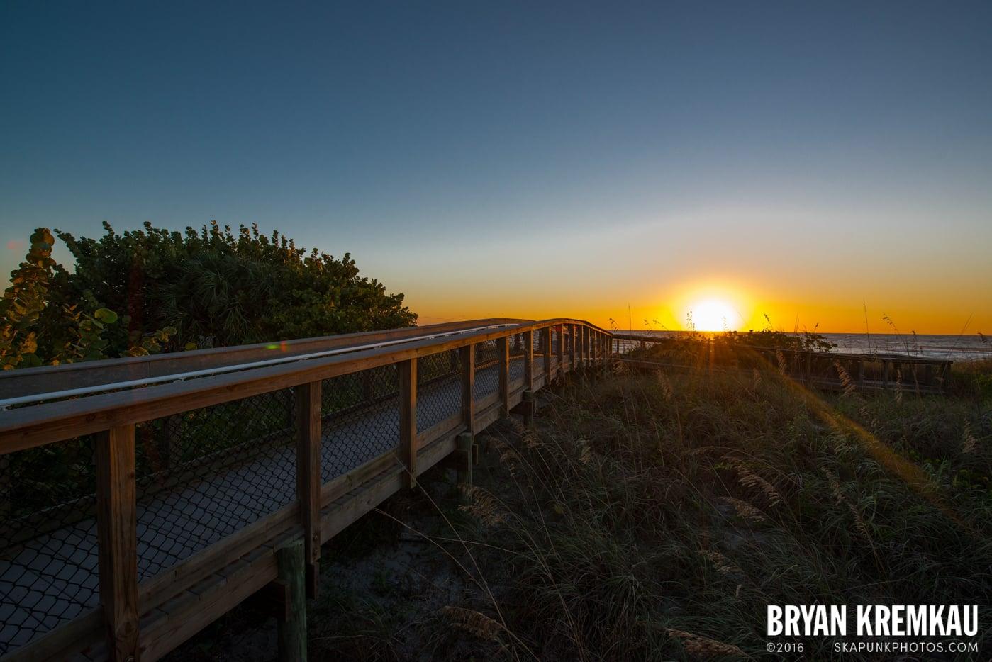Sunsets, Astrophotography & Birds @ Venice, Florida - 10.25.14 - 11.5.14 (102)