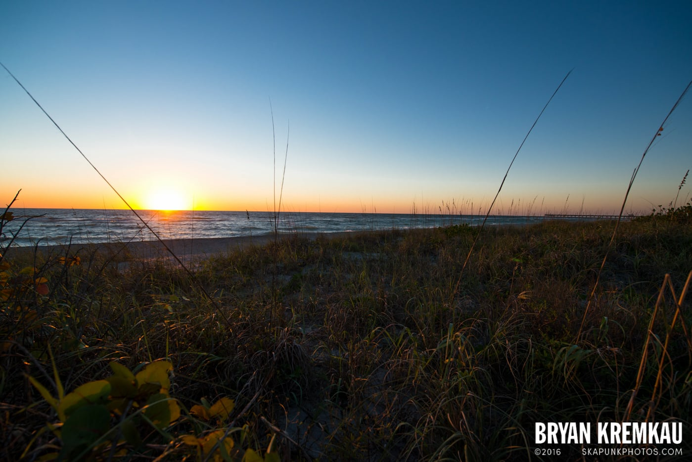 Sunsets, Astrophotography & Birds @ Venice, Florida - 10.25.14 - 11.5.14 (100)
