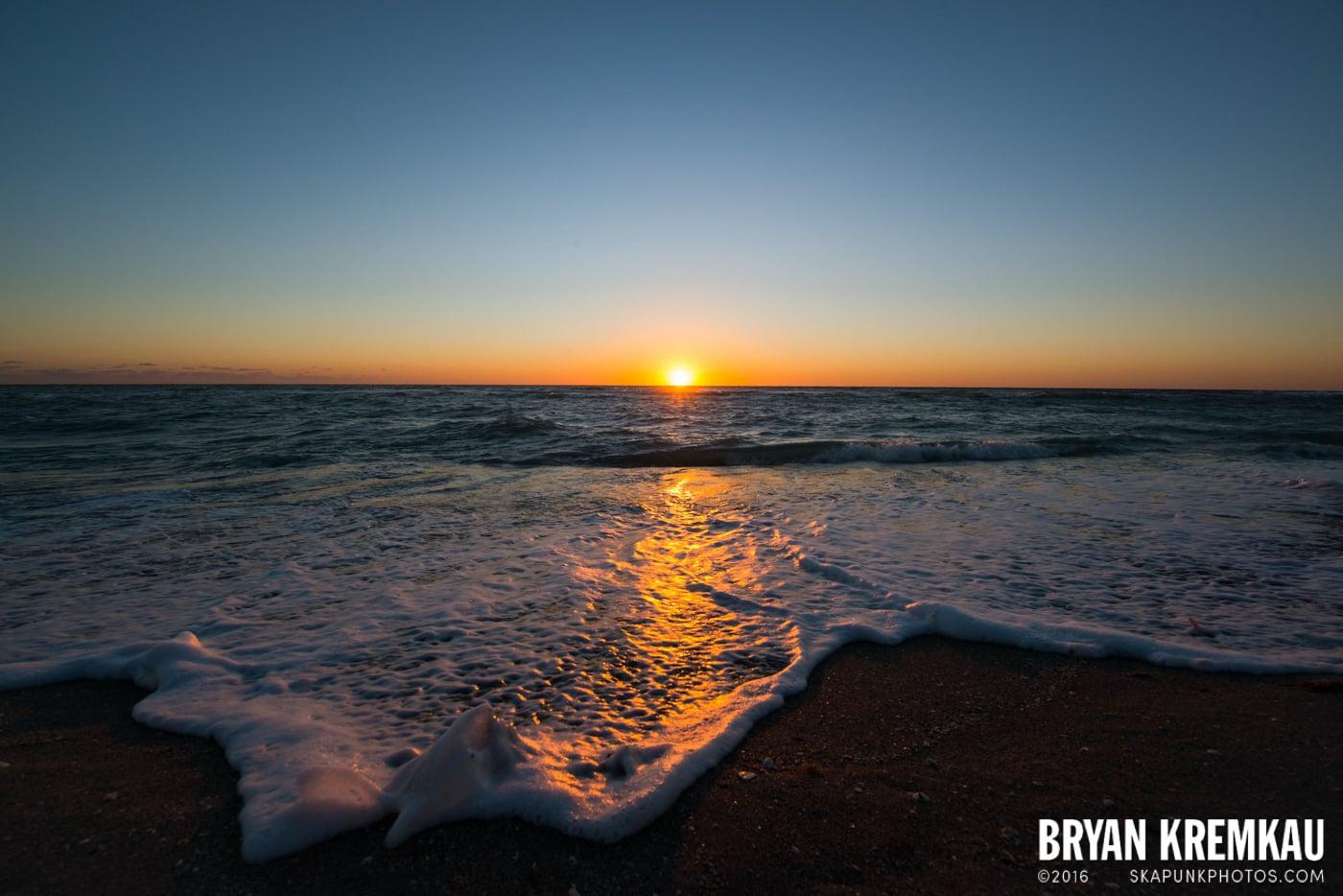 Sunsets, Astrophotography & Birds @ Venice, Florida - 10.25.14 - 11.5.14 (99)