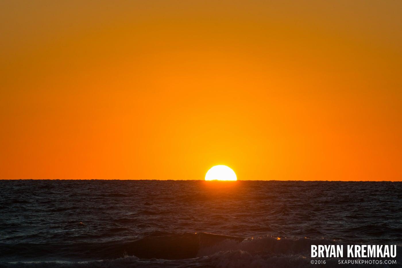 Sunsets, Astrophotography & Birds @ Venice, Florida - 10.25.14 - 11.5.14 (97)