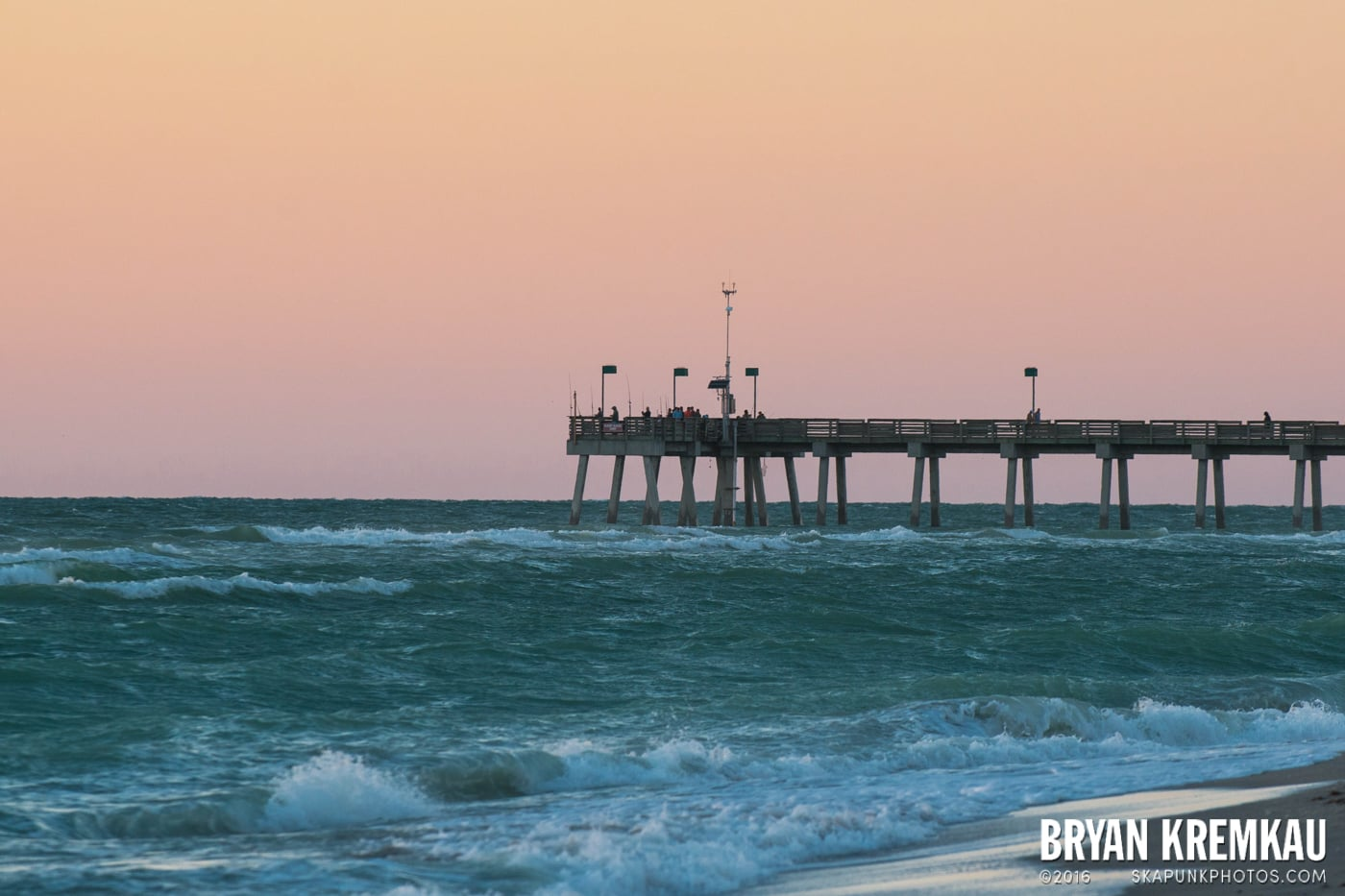 Sunsets, Astrophotography & Birds @ Venice, Florida - 10.25.14 - 11.5.14 (96)