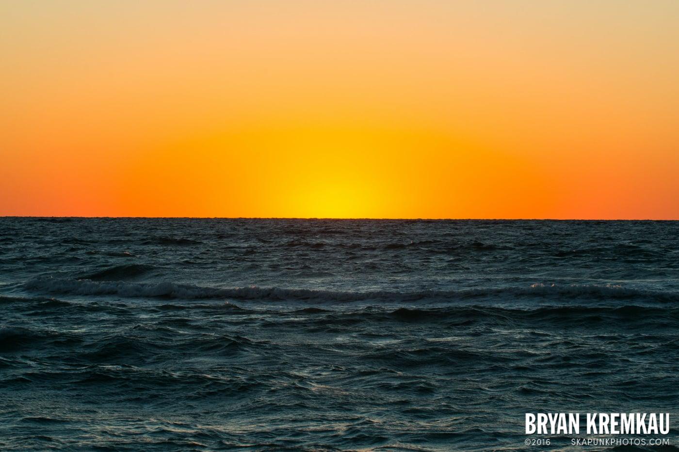 Sunsets, Astrophotography & Birds @ Venice, Florida - 10.25.14 - 11.5.14 (95)