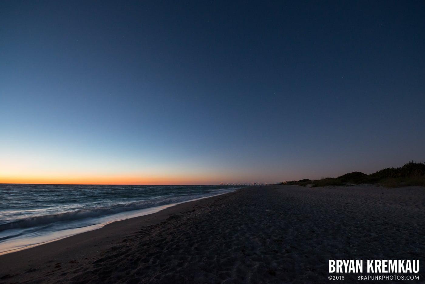 Sunsets, Astrophotography & Birds @ Venice, Florida - 10.25.14 - 11.5.14 (89)