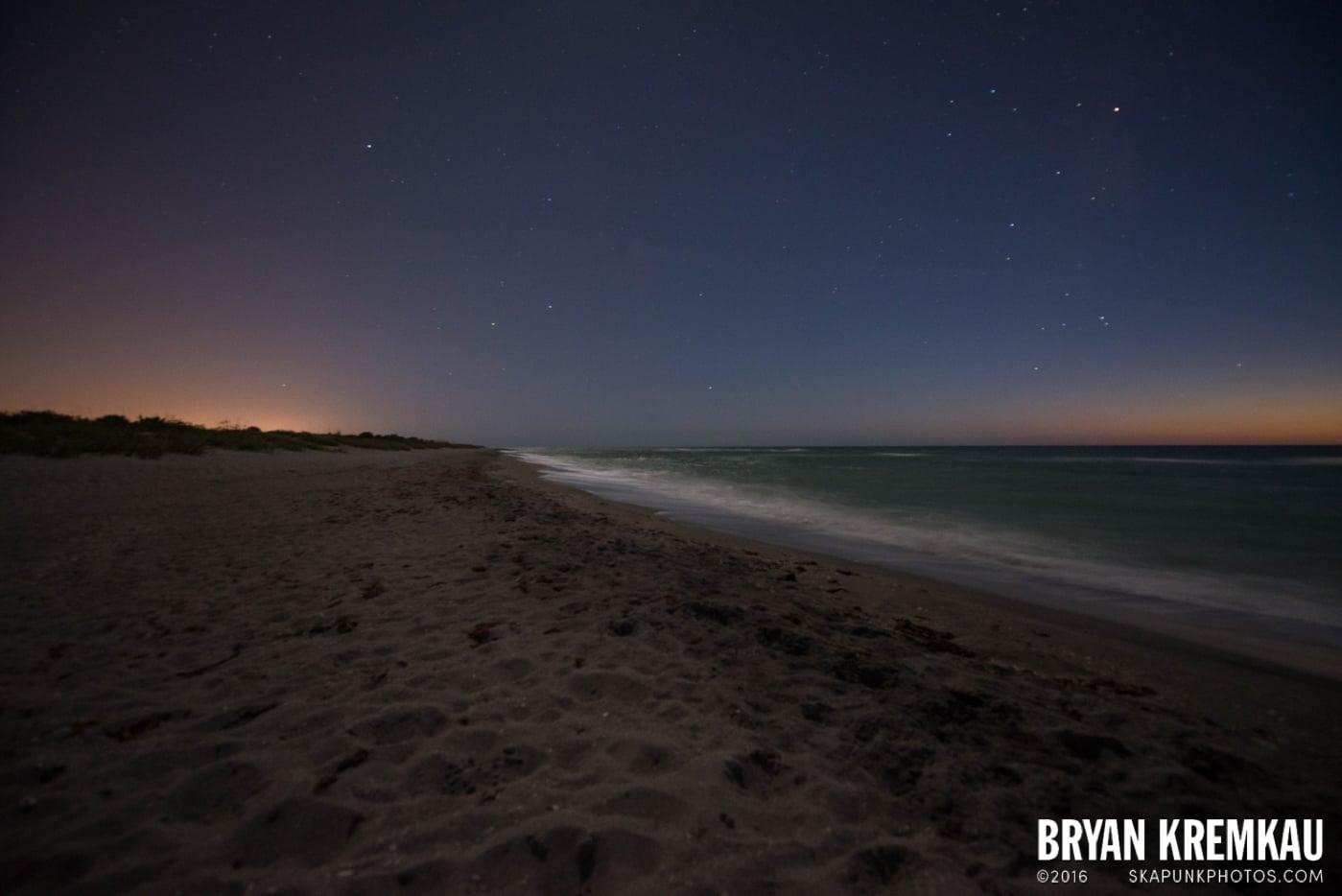 Sunsets, Astrophotography & Birds @ Venice, Florida - 10.25.14 - 11.5.14 (82)