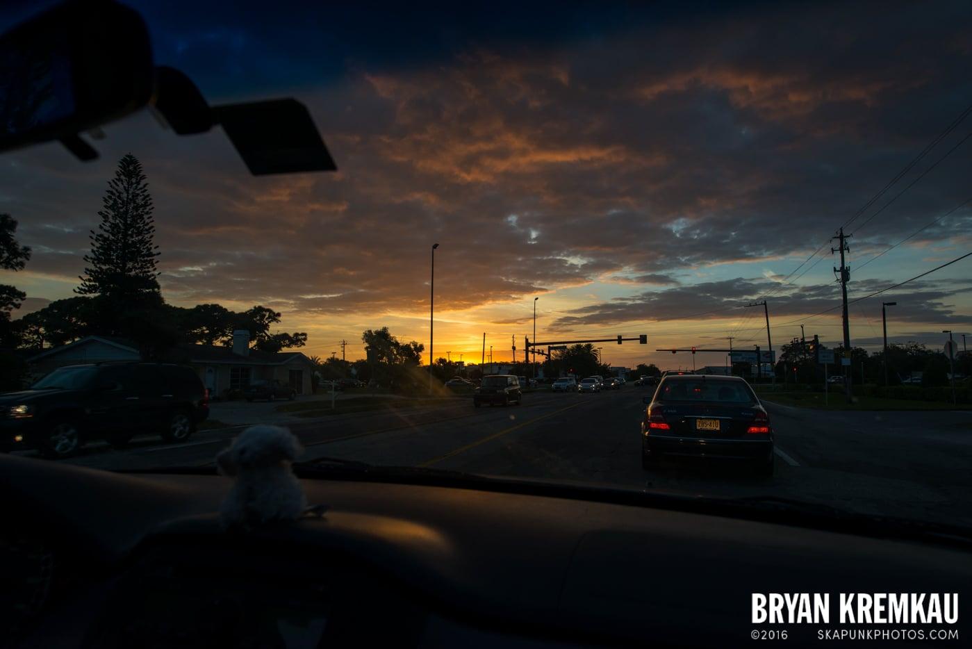 Sunsets, Astrophotography & Birds @ Venice, Florida - 10.25.14 - 11.5.14 (66)