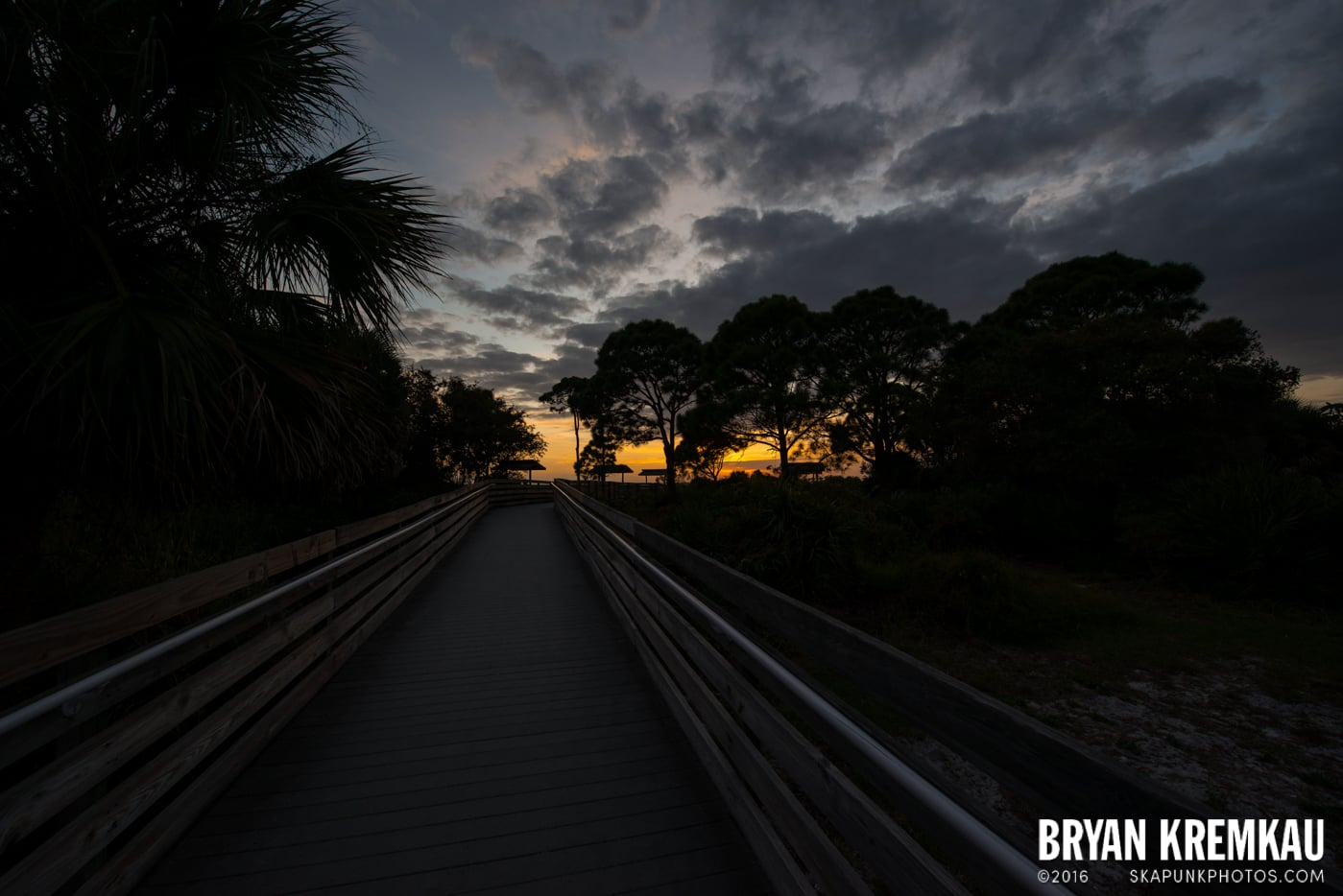 Sunsets, Astrophotography & Birds @ Venice, Florida - 10.25.14 - 11.5.14 (64)