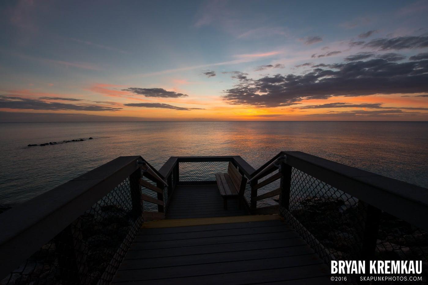 Sunsets, Astrophotography & Birds @ Venice, Florida - 10.25.14 - 11.5.14 (63)