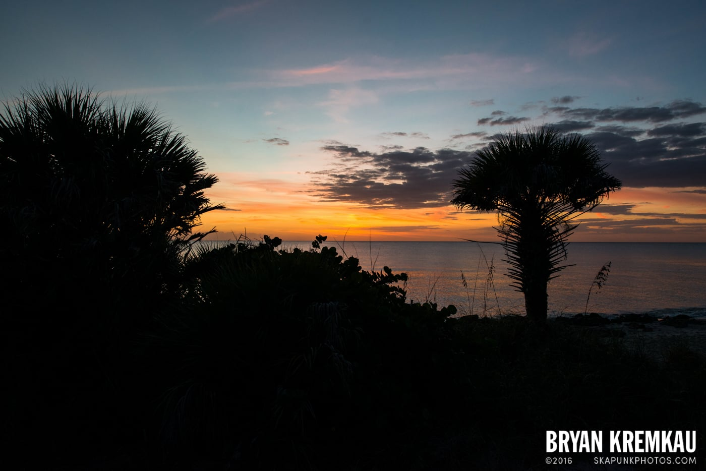 Sunsets, Astrophotography & Birds @ Venice, Florida - 10.25.14 - 11.5.14 (60)