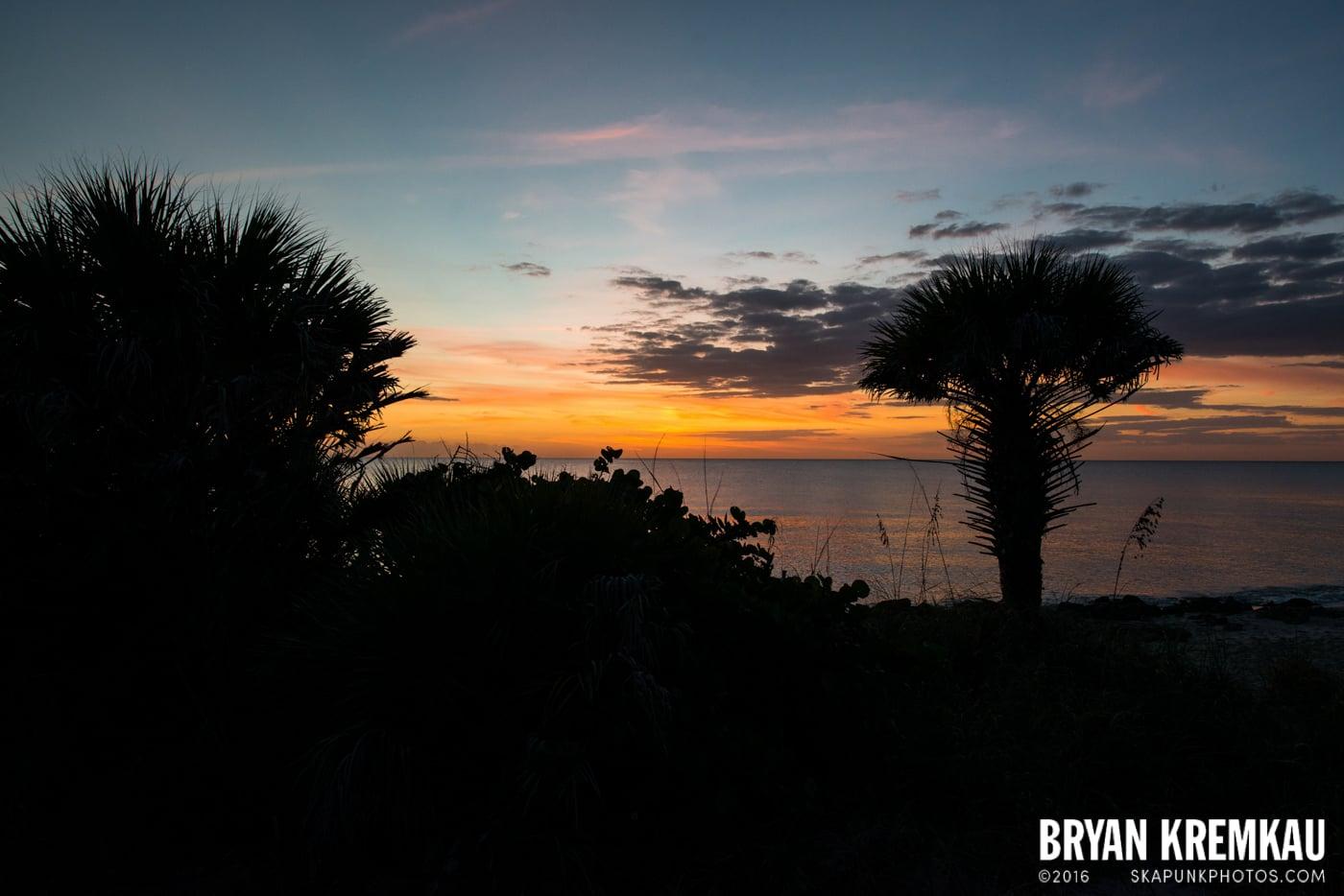 Sunsets, Astrophotography & Birds @ Venice, Florida - 10.25.14 - 11.5.14 (60)