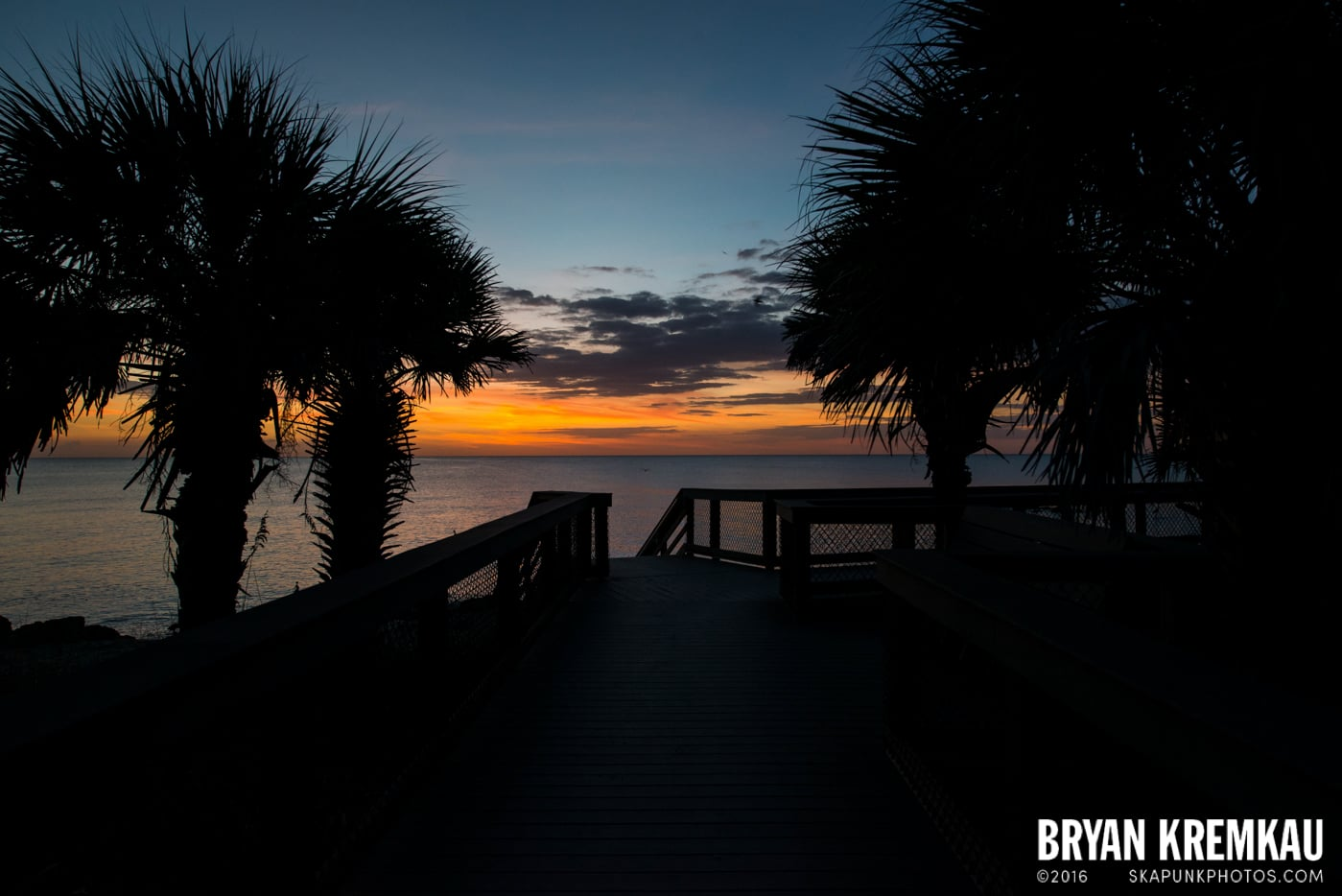 Sunsets, Astrophotography & Birds @ Venice, Florida - 10.25.14 - 11.5.14 (59)