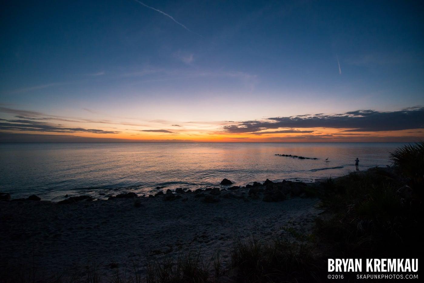 Sunsets, Astrophotography & Birds @ Venice, Florida - 10.25.14 - 11.5.14 (56)