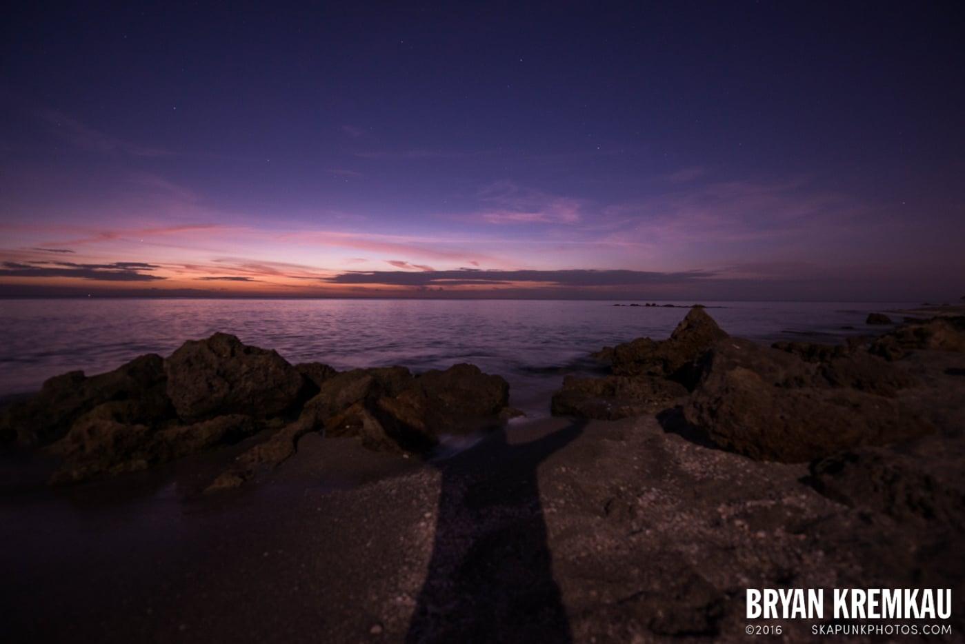 Sunsets, Astrophotography & Birds @ Venice, Florida - 10.25.14 - 11.5.14 (49)