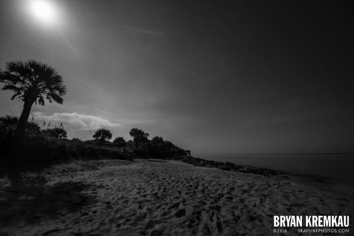 Sunsets, Astrophotography & Birds @ Venice, Florida - 10.25.14 - 11.5.14 (29)