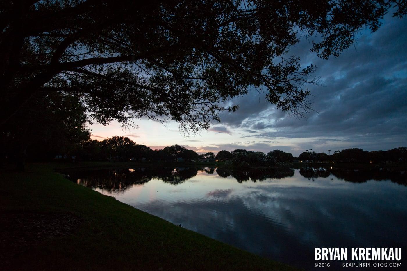 Sunsets, Astrophotography & Birds @ Venice, Florida - 10.25.14 - 11.5.14 (4)