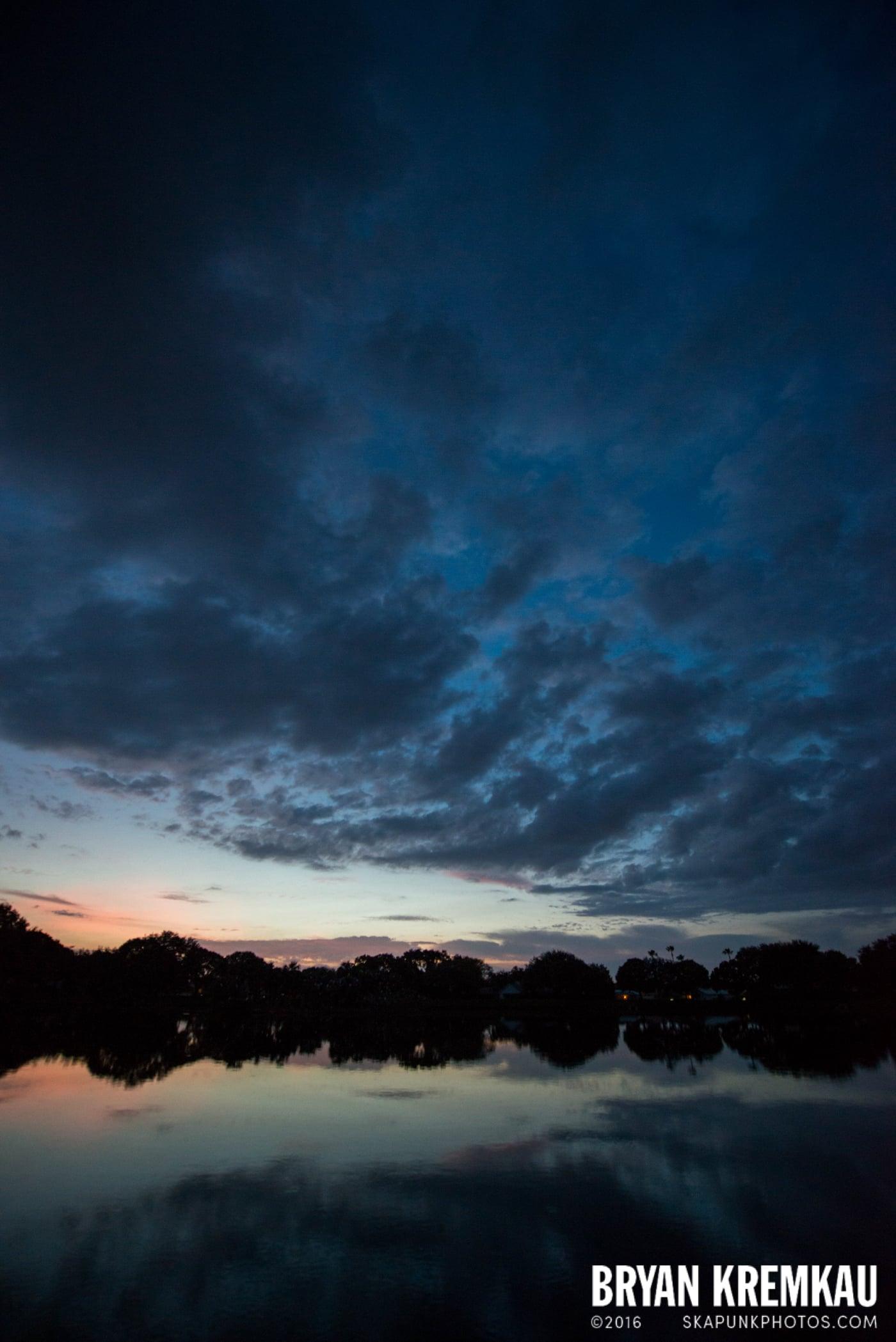 Sunsets, Astrophotography & Birds @ Venice, Florida - 10.25.14 - 11.5.14 (2)