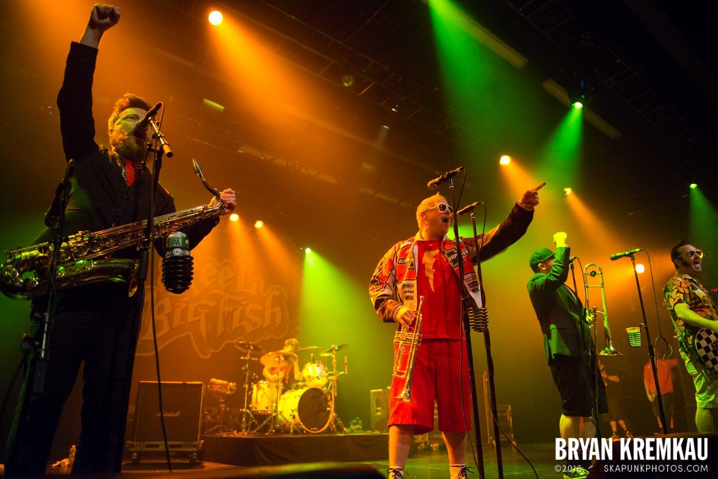 Reel Big Fish @ Best Buy Theater, NYC - 6.16.15 (28)