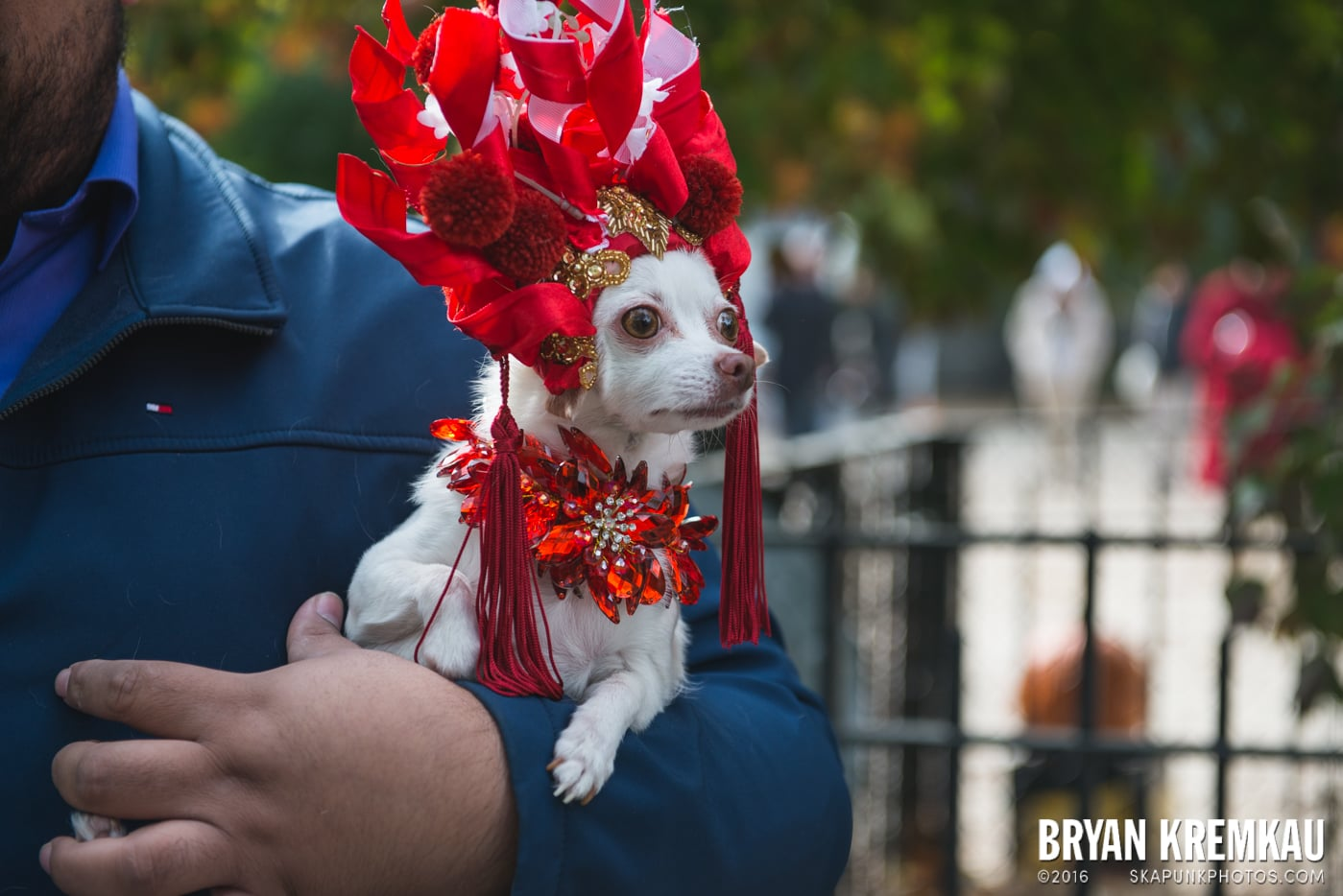 Tompkins Square Halloween Dog Parade 2015 @ Tompkins Square Park, NYC – 10.24.15 (73)