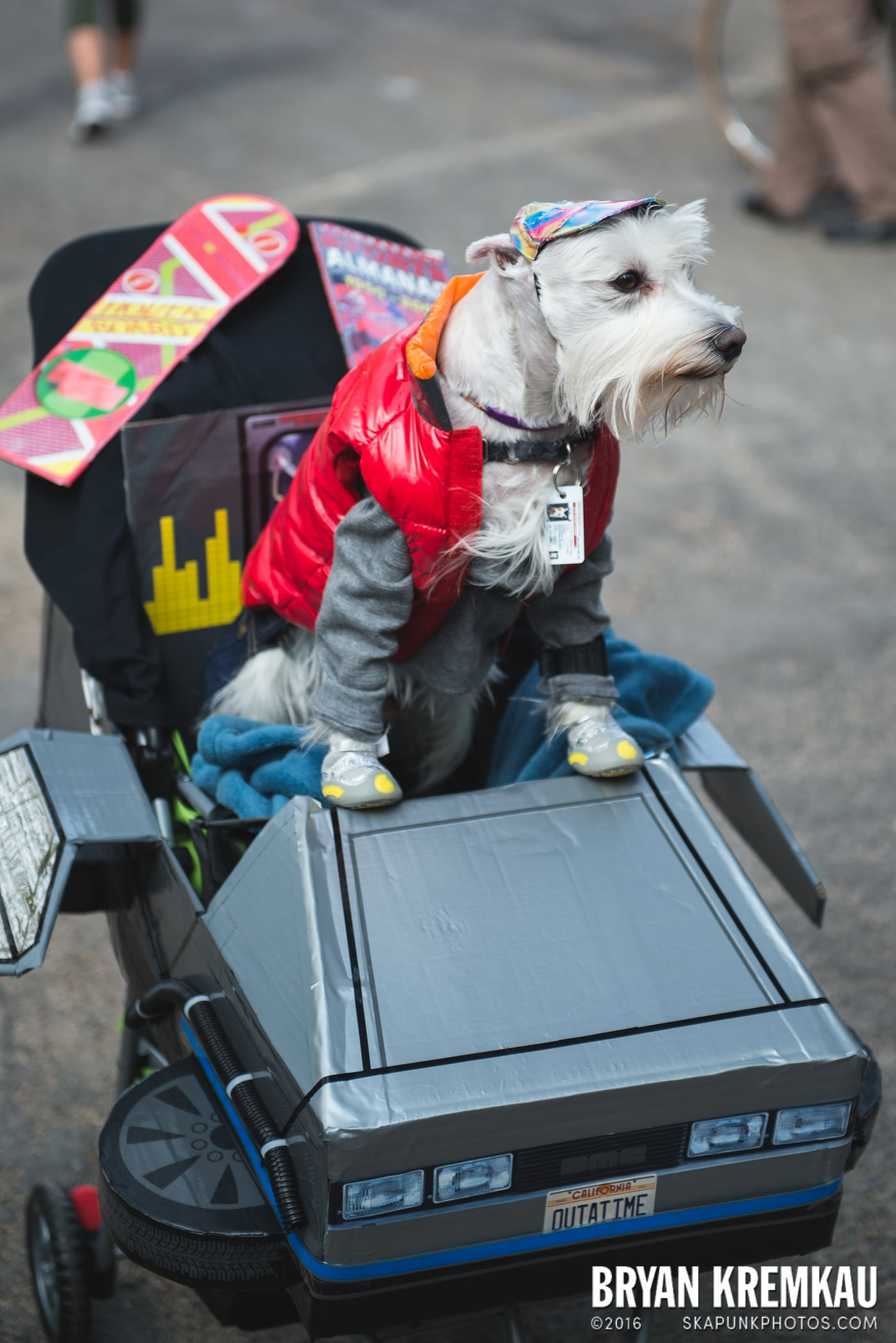Tompkins Square Halloween Dog Parade 2015 @ Tompkins Square Park, NYC – 10.24.15 (72)