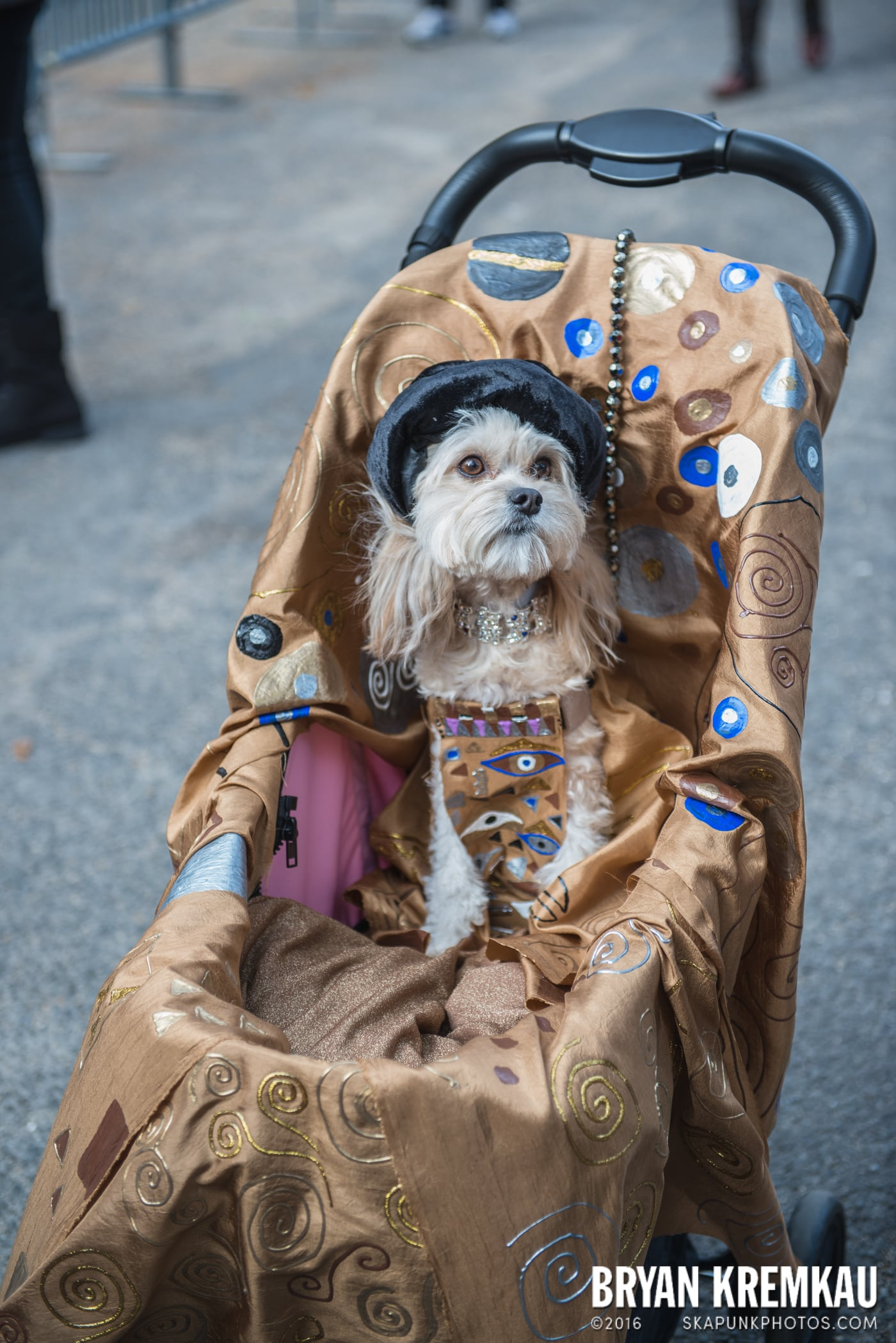 Tompkins Square Halloween Dog Parade 2015 @ Tompkins Square Park, NYC – 10.24.15 (70)