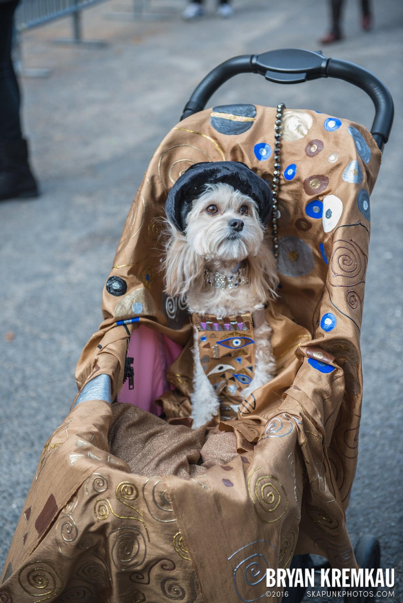 Tompkins Square Halloween Dog Parade 2015 @ Tompkins Square Park, NYC – 10.24.15 (70)