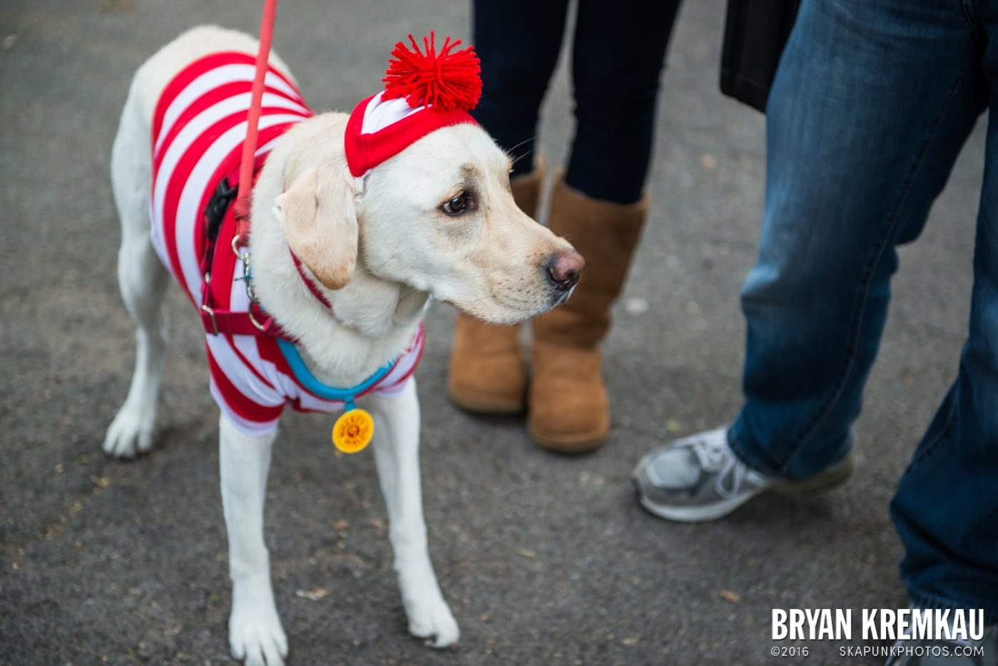 Tompkins Square Halloween Dog Parade 2015 @ Tompkins Square Park, NYC – 10.24.15 (66)