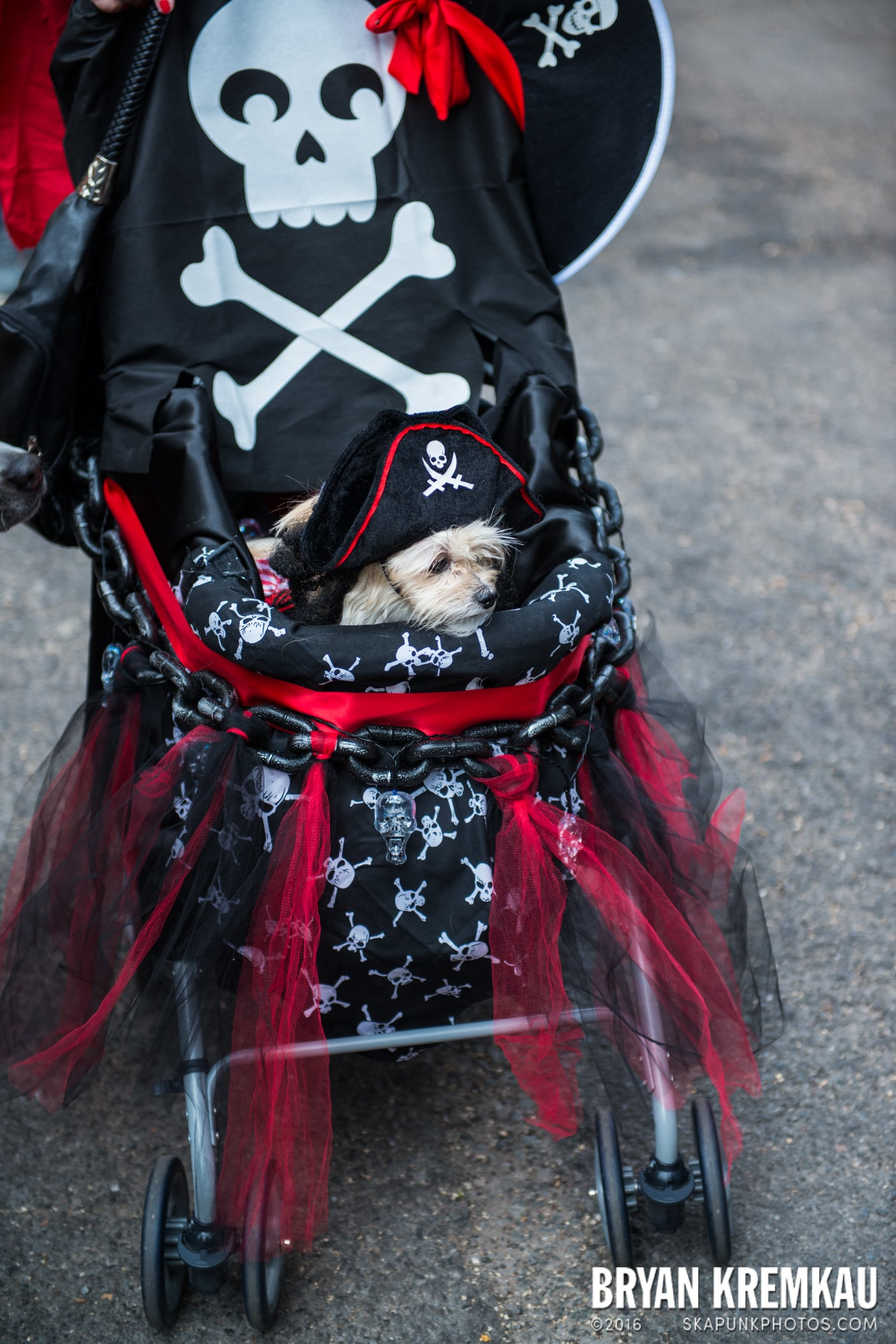 Tompkins Square Halloween Dog Parade 2015 @ Tompkins Square Park, NYC – 10.24.15 (63)
