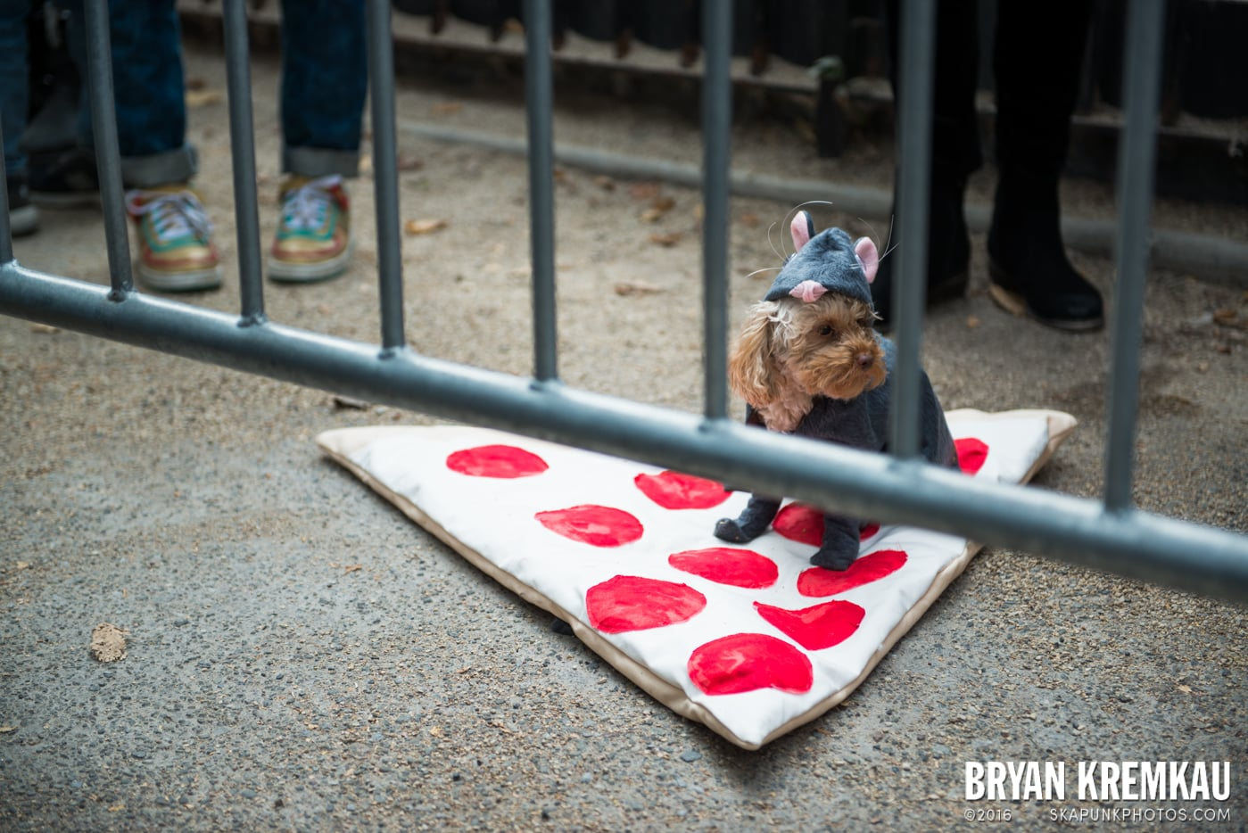 Tompkins Square Halloween Dog Parade 2015 @ Tompkins Square Park, NYC – 10.24.15 (59)