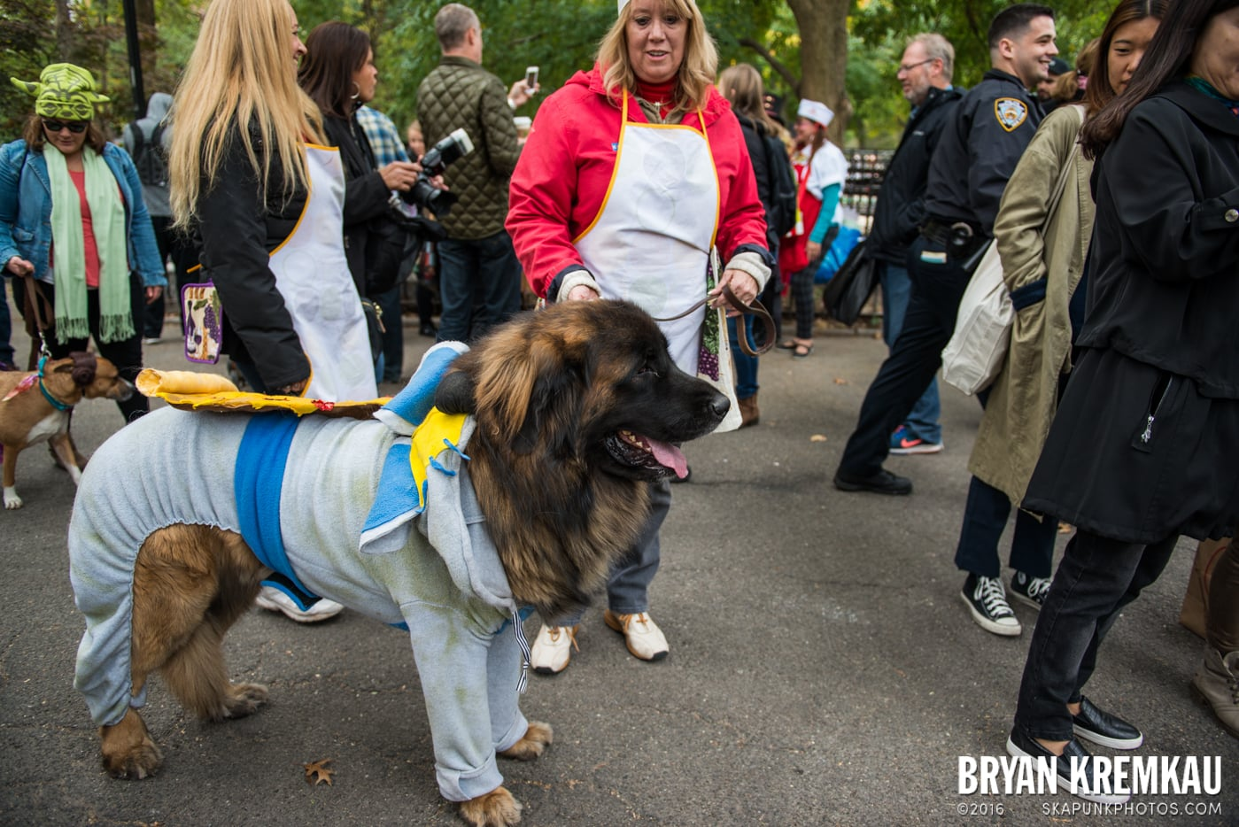 Tompkins Square Halloween Dog Parade 2015 @ Tompkins Square Park, NYC – 10.24.15 (56)