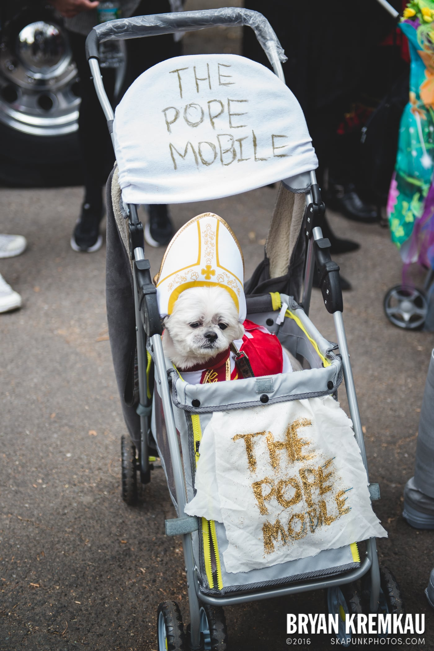 Tompkins Square Halloween Dog Parade 2015 @ Tompkins Square Park, NYC – 10.24.15 (50)