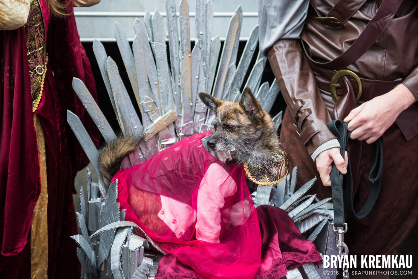 Tompkins Square Halloween Dog Parade 2015 @ Tompkins Square Park, NYC – 10.24.15 (48)