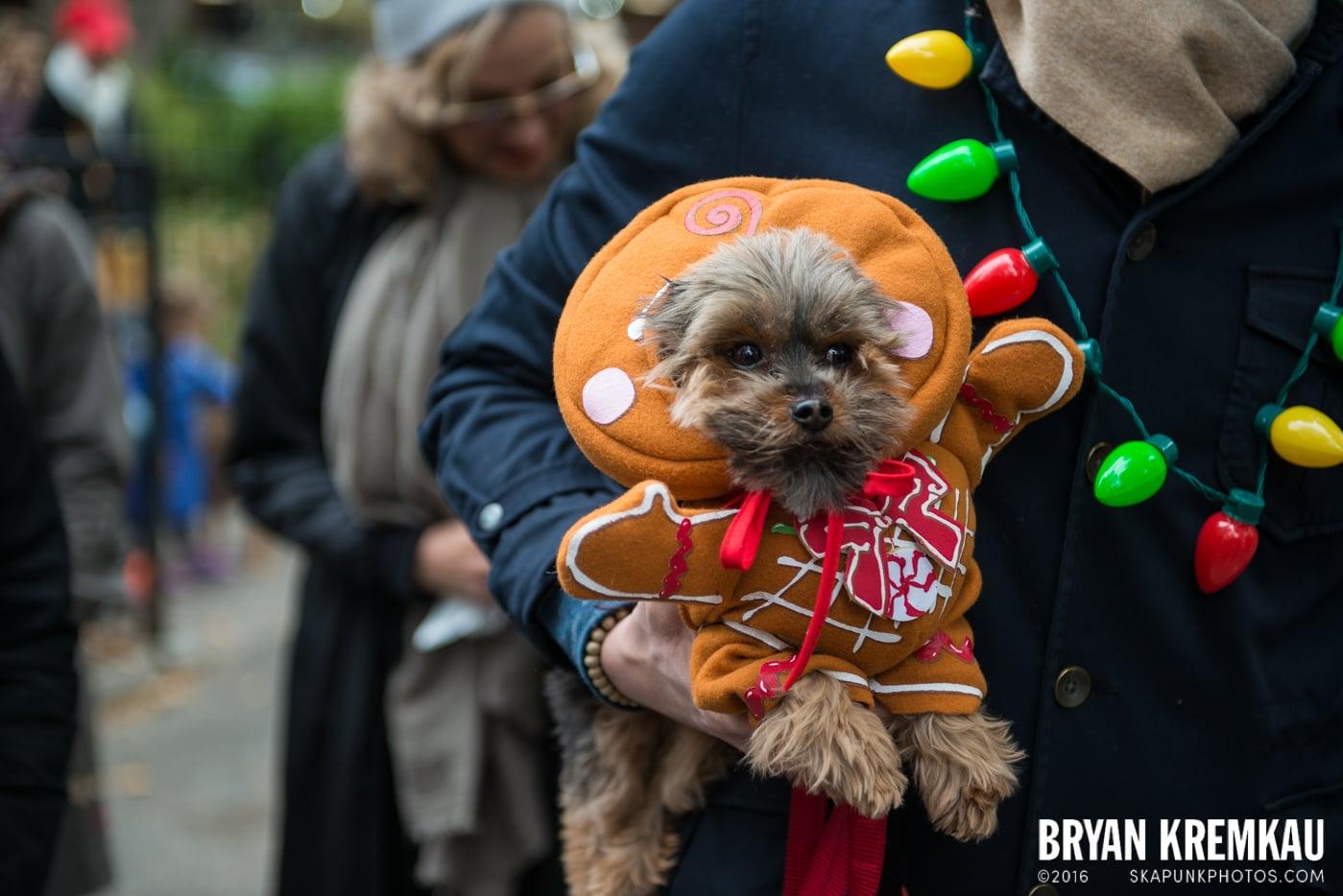 Tompkins Square Halloween Dog Parade 2015 @ Tompkins Square Park, NYC – 10.24.15 (44)